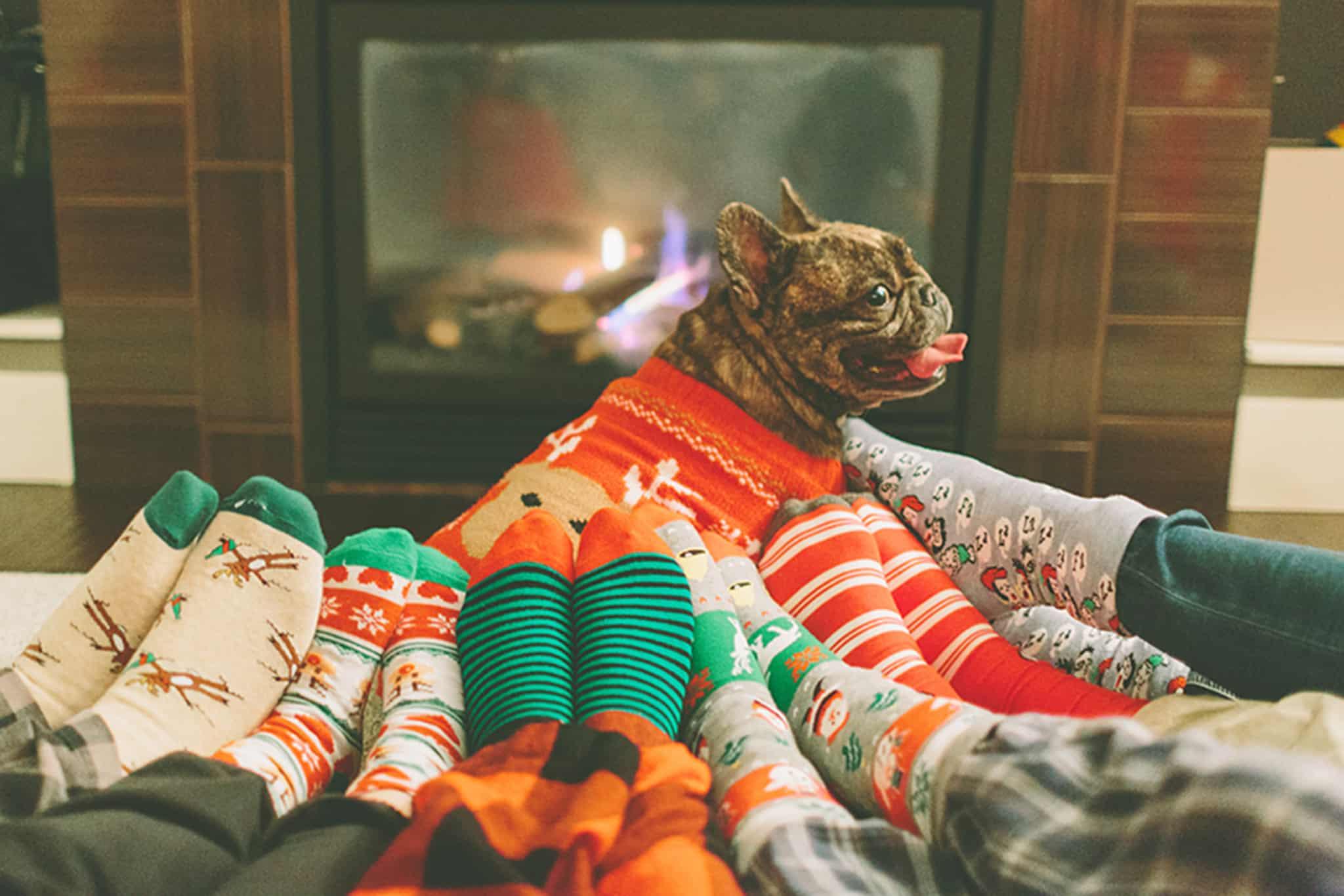 familia com meias de natal sentadas à frente da lareira e com um cão