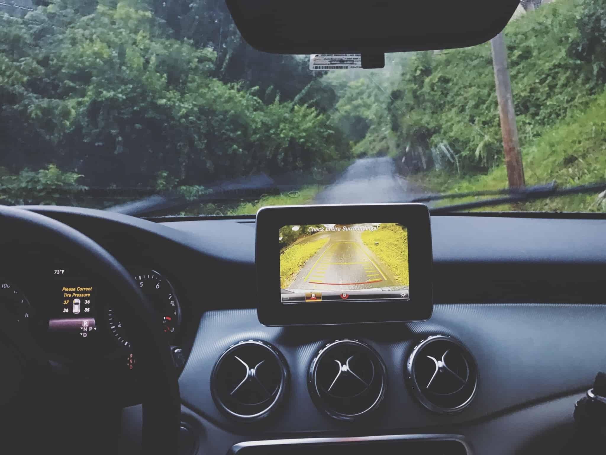 carro a andar numa estrada no bosque
