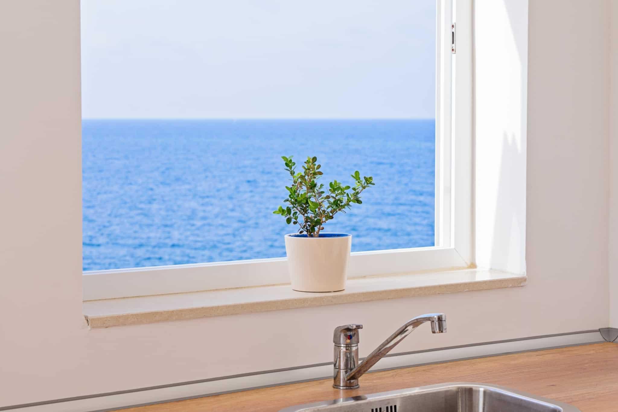 bacia de cozinha com planta e janela com vista para o mar