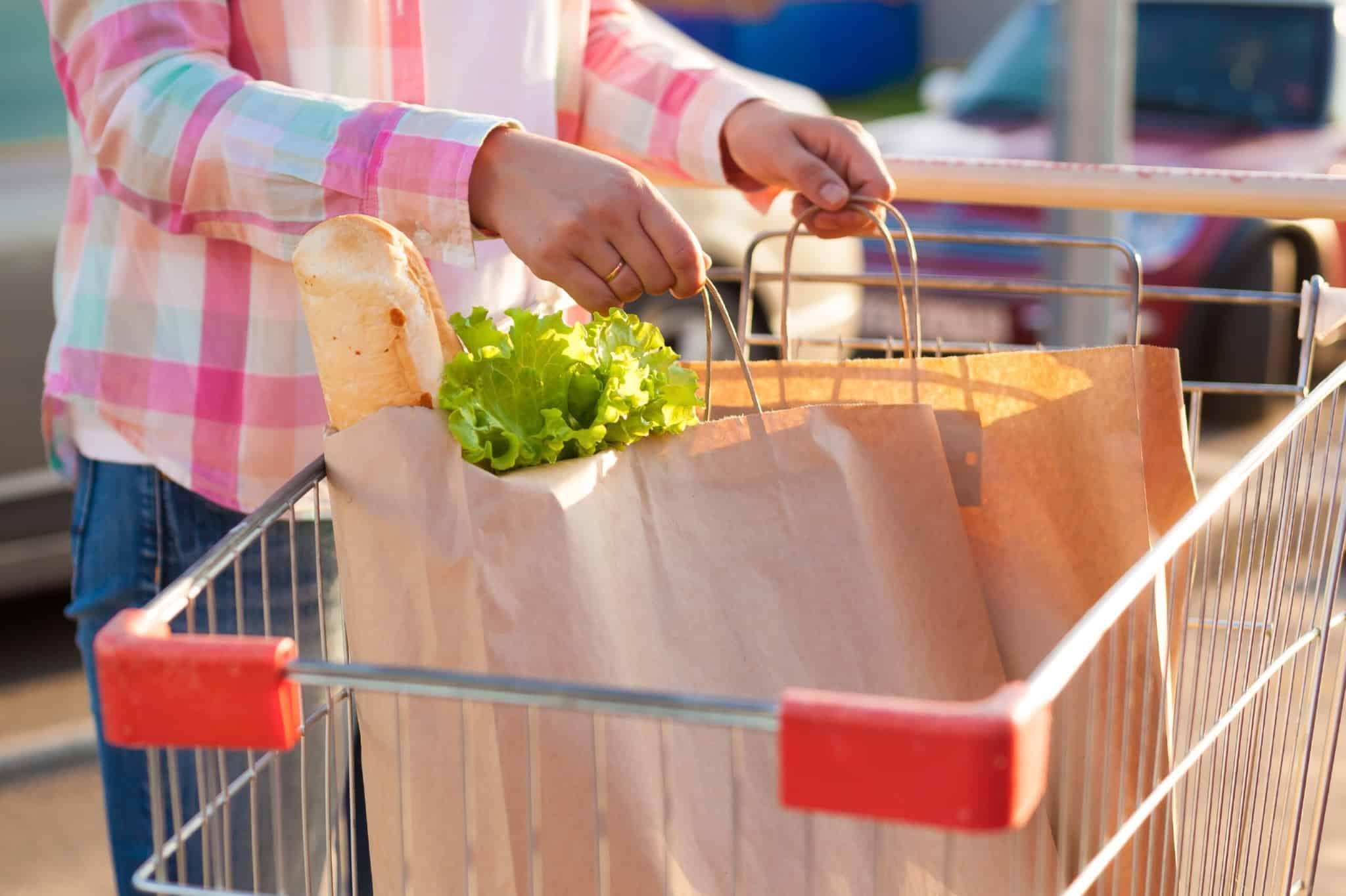 pessoa com carrinho de compras com dois sacos