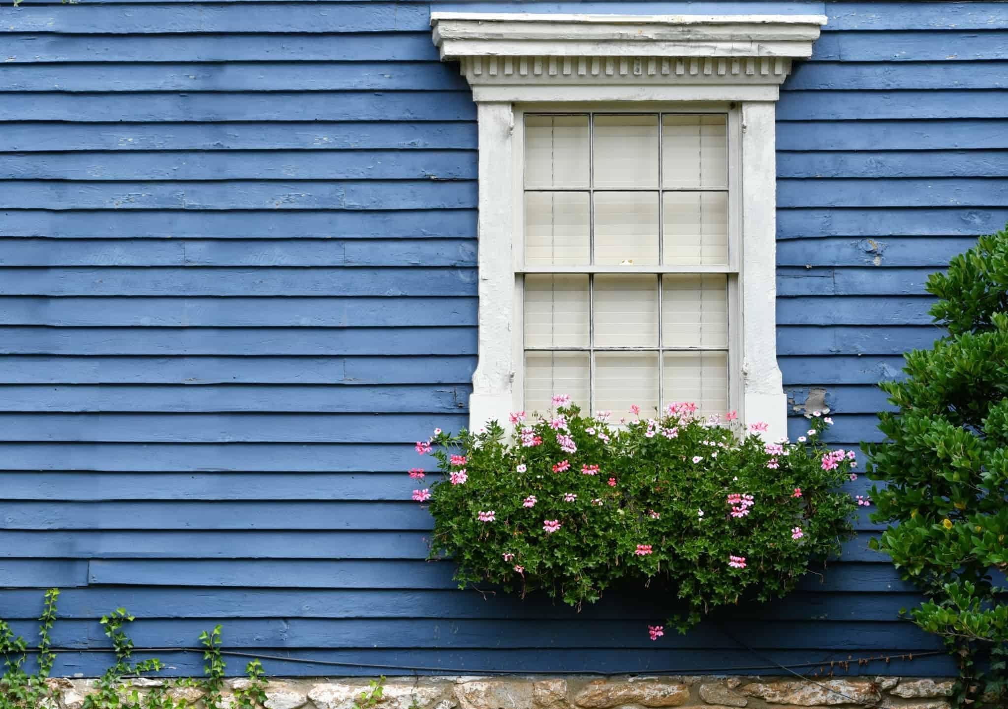 janela branca com flores rosa no exterior de uma casa azul